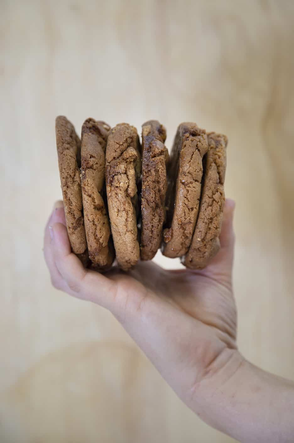 the daily goods foodtruck pukekohe cookies